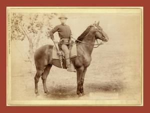 The Cavalier. the Young Soldier and His Horse on Duty [A]T Camp Cheyenne by John C. H. Grabill