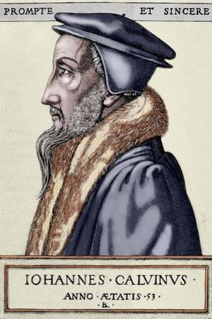John Calvin (1509 1564). French Theologian and Pastor During the Protestant Reformation