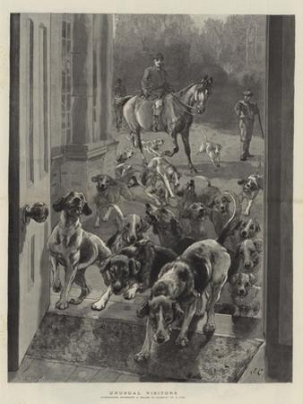 Unusual Visitors by John Charlton