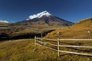 Cotopaxi National Park, Snow-Capped Cotopaxi Volcano by John Coletti