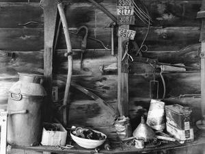 Tool Shed by John Collier