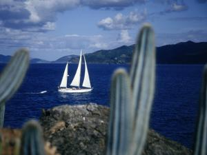 Sailboat, Baja, Mexico by John Connell
