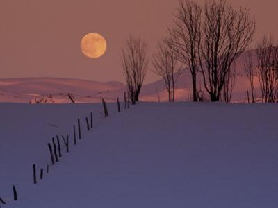 Wooden Fence in Snow Covered Field at Sunset