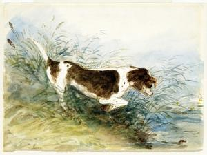 A Dog Watching a Rat in the Water - Dedham, Painted 1831 by John Constable