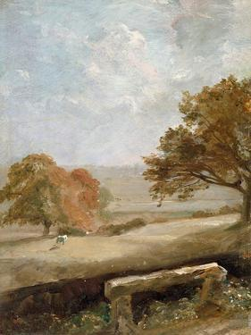 A Park Glade: View of Dedham Church by John Constable