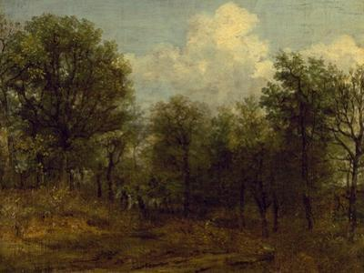 A Wood, 1776-1837 by John Constable