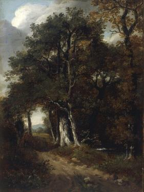 A Woodland Scene, c.1801 by John Constable