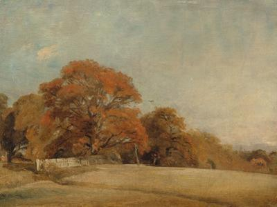 An Autumnal Landscape at East Bergholt, c.1805-08 by John Constable