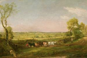 Dedham Vale: Morning, C.1811 by John Constable