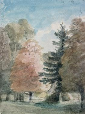 Study of Trees in a Park by John Constable