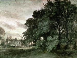 Study of Trees (Oil on Paper) by John Constable