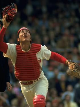 Cincinnati Reds Catcher Johnny Bench Catching Pop Fly During Game Against San Francisco Giants by John Dominis