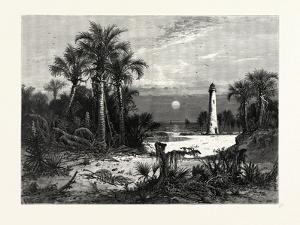 Moonrise on the Coast of Florida by John Douglas Woodward