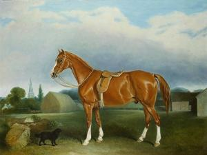 A Chestnut Hunter and a Spaniel by Farm Buildings by John E. Ferneley