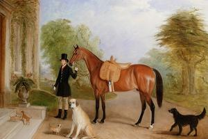 A Groom with a Horse by John E. Ferneley