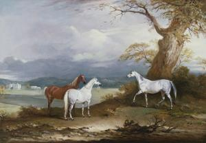 Lord Macdonald's Mares on the Grounds of Thorpe Hall, Rudston, Yorkshire, 1836 by John E. Ferneley