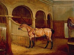 Lord Villiers' Roan Hack in the Stables at Middleton Park, 1834 by John E. Ferneley