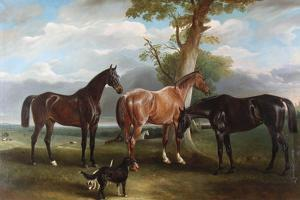 The 6th Duke's Favourite Hunters and Dogs, 1857 by John E. Ferneley
