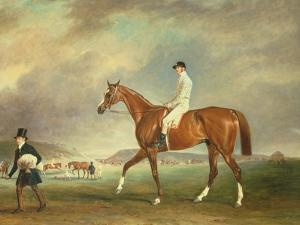 The Cur Chestnut Racehorse with Jockey Up on Newmarket Heath by John E. Ferneley