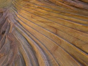 Colorful striated sandstone layers at Coyote Buttes by John Eastcott & Yva Momatiuk