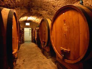 Aging Barrels in Castellina in Chianti Enoteca, Chianti, Tuscany, Italy by John Elk III