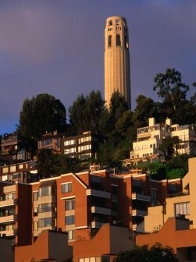 Apartment Buildings with Coit Tower Behind, San Francisco, USA by John Elk III