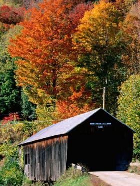 Autumn Leaves Surrounding Cilley Covered Bridge, Vermont by John Elk III