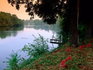 Cane River by John Elk III