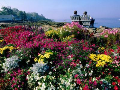 Couple Reading at Ocean Point Shoreline, Flowers in Foreground, Maine