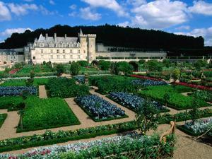 Gardens of Chateau Villandry, France by John Elk III