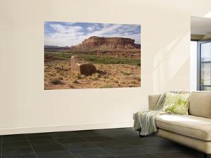 Mile 24 Boulder with Ancestral Puebloan Petroglyphs, Deadhorse Canyon by John Elk III