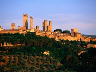 Trees and Buildings of Town at Sunrise, San Gimignano, Tuscany, Italy by John Elk III