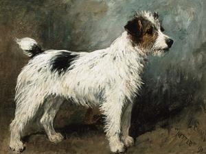 A Portrait of Nettle, a Terrier by John Emms