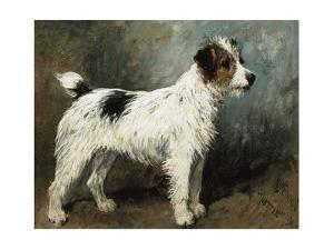 A Portrait of Nettle, a Terrier by John Emms