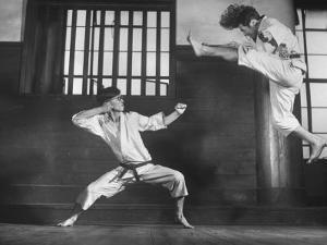 Japanese Karate Students Demonstrating Fighting by John Florea