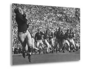 Michigan University's Bob Mann Catching a Pass From His QB Bob Chappuis by John Florea