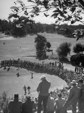 Spectators Watching as Men Compete in the Golf Tournament, Riviera Country Club by John Florea