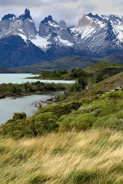 Chile, Patagonia Torres del Paine National Park with Grasses by John Ford