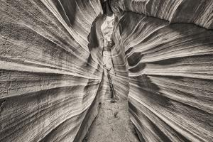 Escalante Canyons. by John Ford