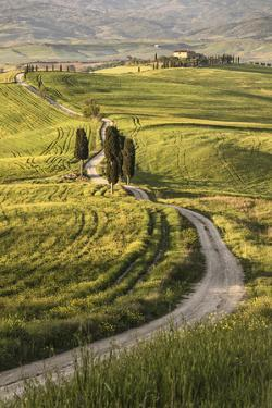 Europe, Italy, Tuscany, Val d'Orcia by John Ford