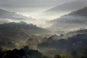 Italy, Tuscany, Foggy Morning by John Ford