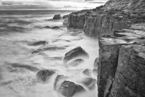 New Zealand, Asia, Catlins National Forest Curio Bay by John Ford