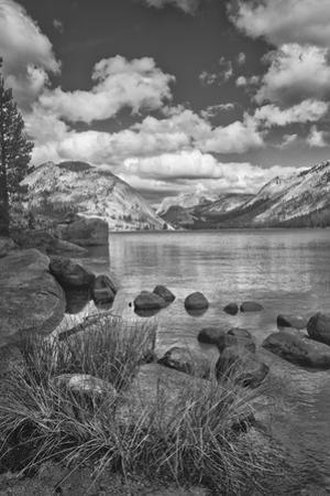 USA, California, Lake Tenaya by John Ford