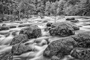 USA, California, Yosemite, Happy Isles by John Ford