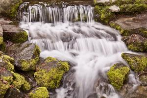 USA, California, Yosemite, Small Falls by John Ford