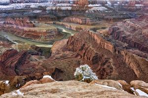 USA, Utah, Morning after Snow at Dead Horse Point, Canyonlands NP by John Ford