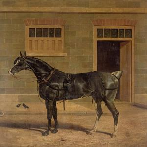 A Carriage Horse in a Stable Yard by John Frederick Herring I