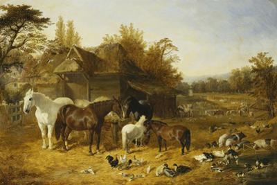 A Farmyard with Horses and Ponies, Berkshire, Saddlebacks, Alderney Shorthorn Cattle, Bantams,… by John Frederick Herring I