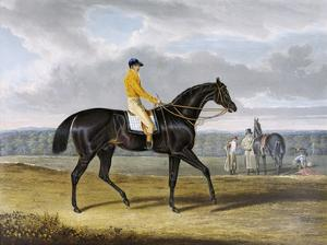 Aquatint by Thomas Sutherland After Jack Spigot, Winner 1821 by John Frederick Herring I