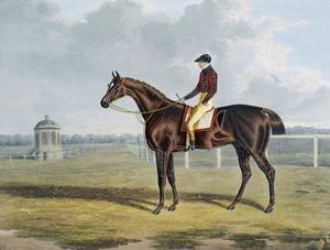 Aquatint by Thomas Sutherland After St. Patrick, Winner 1820 by John Frederick Herring I